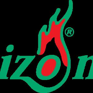 logo-heizo